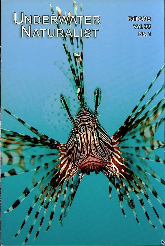 Underwater Naturalist 1