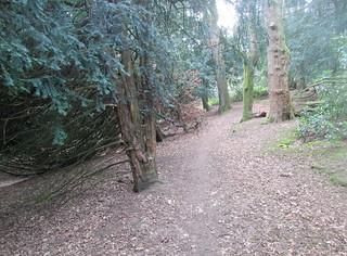 Balbirnie Walk | by piningforthewest