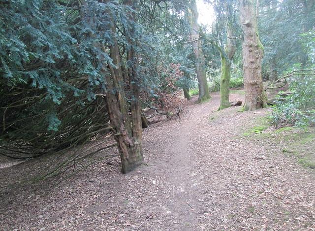 Balbirnie Walk