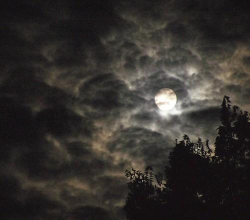 Night sky   by Valerie Everett