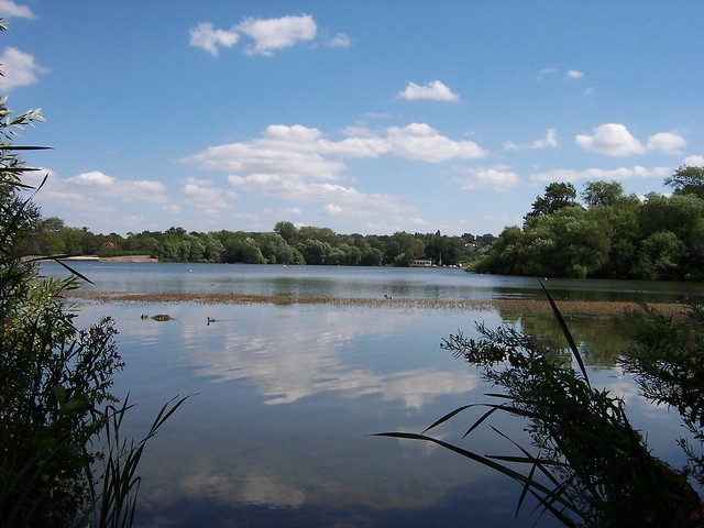 Lake at Aldenham Country Park