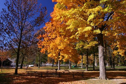 "statepark park desktop blue camping autumn orange fall colors weather yellow composition fallcolors sunny bluesky story albumcover stories devilslake sunnyday 秋天 wisconson 桌布 fallseason mingfong musicflyer mingfongjan artbrochure sketchoflight ""秋天風景"" ""風景桌布"""