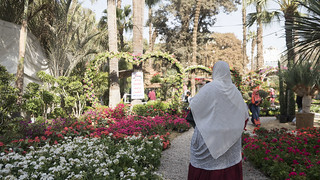 Elections campaigning and flowery arcs at Egypt's Spring Flowers Fair 2018 | by Kodak Agfa