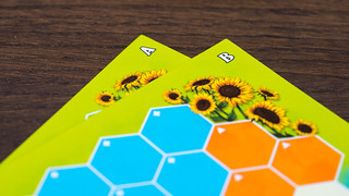 Sunflower Valley | by Doctor Meeple