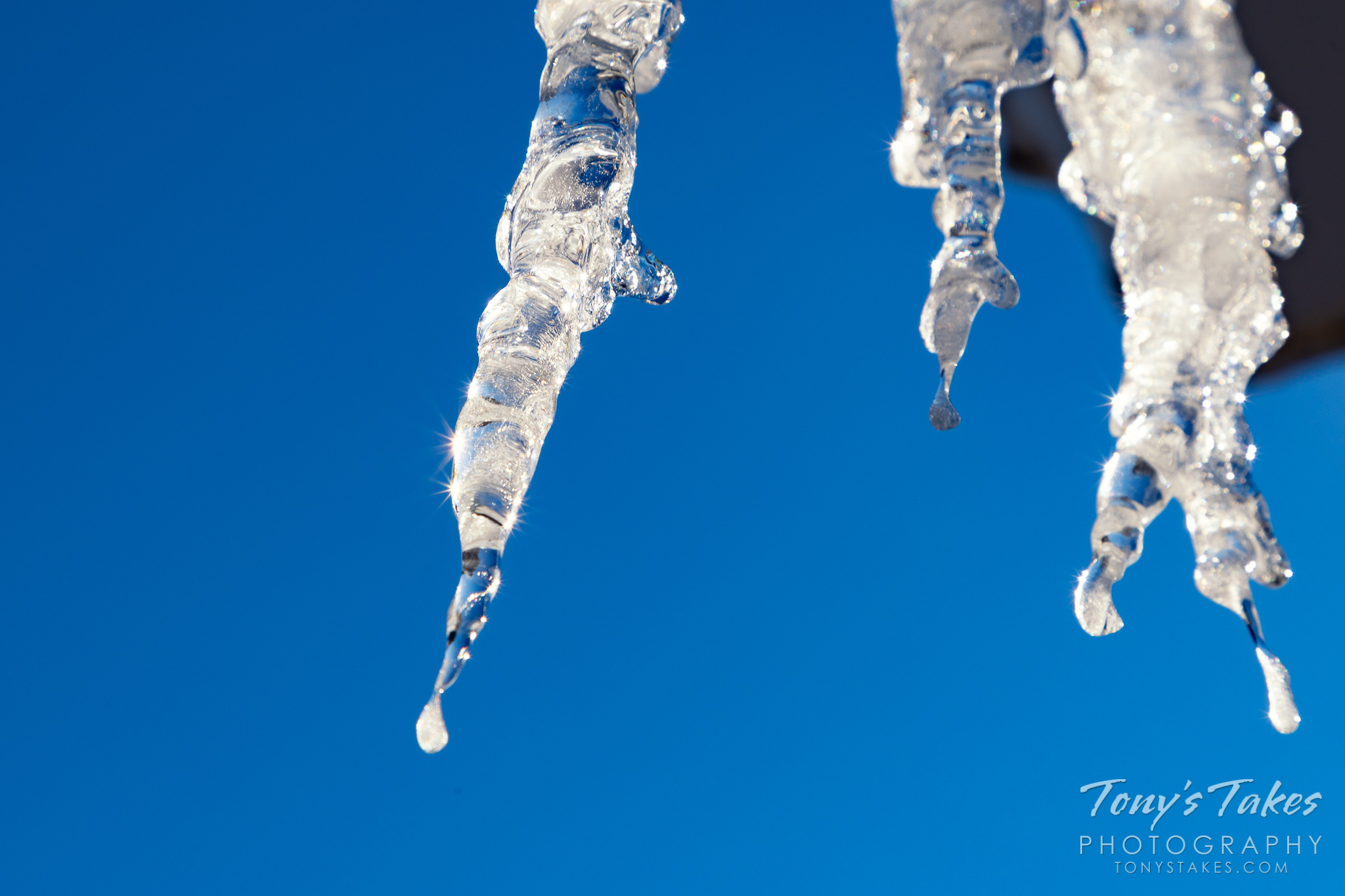 Icicles shine against a deep blue sky in Colorado. (© Tony's Takes)