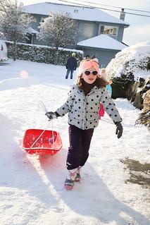20190209 snowzilla-33 | by schnell foto