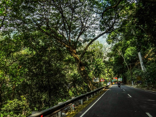 Road to Ooty !
