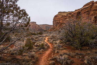 Ute Canyon Trail | by IntrepidXJ