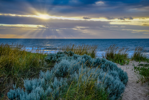 manualfocus westernaustralia backbeach wa sunset bunbury pathtothebeach fantasticnature