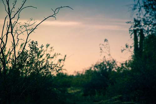 We'll Find A Place Together | by kevinspencer