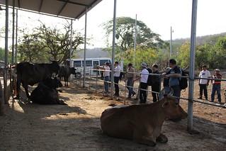 IMG_2319[1] | by MAG El Salvador