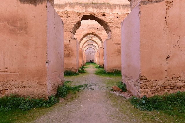 Heri Es Souani, Méknes,  Morocco, January 2019 D810 050