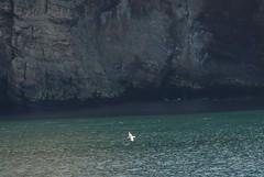 Ilha Decepção