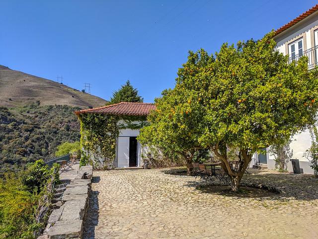 Quinta do Panascal - Fonseca Porto