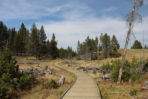 Boardwalk, Yellowstone National Park. Copyright 2018 Jonny Eberle. | by jweberle