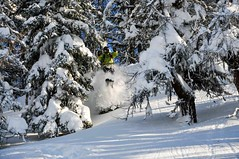 Tom Elias a jeho skok v lese…