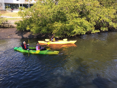 Whitaker Bayou Cleanup and Health Education Event Jan 26 2019 | by Sarasota Bay NEP