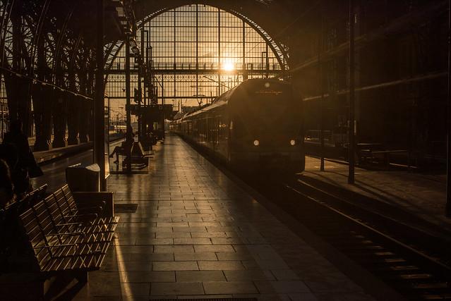 2019-Einfahrender Zug in der Abendsonne im Frankfurter Hauptbahnhof