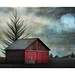 Red Shed by David DeCamp