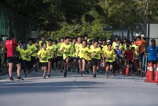Tenby Titans Charity Run 2019