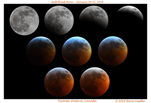 Super Wolf Blood Moon Lunar Eclipse Composite