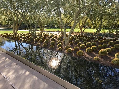 outdoor landscape annenbergestategardens reflection iphone 01092019 davidschultzphotography