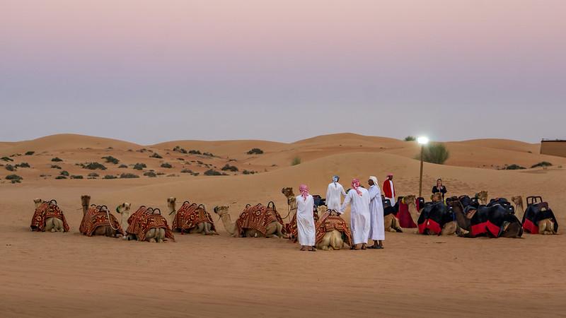 Desert Safari at sunset