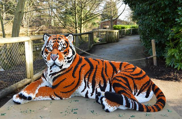 Big Cats Lego Exhibition