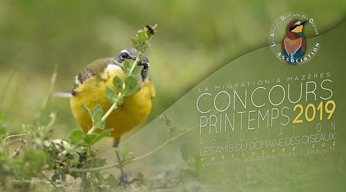 Concours PRINTEMPS 2019 - Les Amis du Domaine des Oiseaux