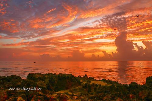 sun sunrise morning dawn clouds cloudy weather horizon rocks sea seashore coast coastline landscape seascape nature mothernature ocean fiery hutchinsonisland stuart florida