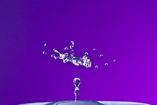 drop16   by GarethBellamy1