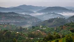 Ruanda-0281.jpg