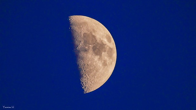 Moon - 6381