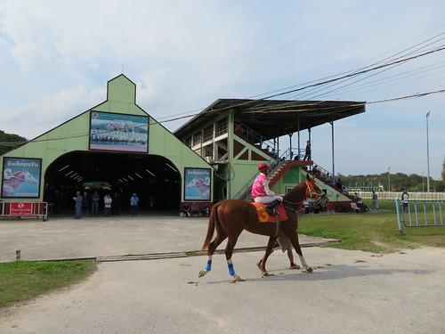 チェンマイ競馬場の本馬場入場風景
