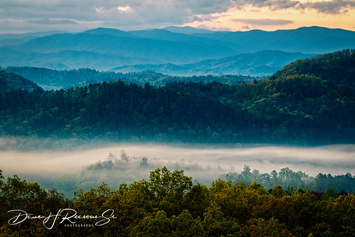 6dmkii greatsmokymtns canon easttennessee fog foothillsparkway morning mountains spring sunrise trees walland tennessee unitedstatesofamerica us