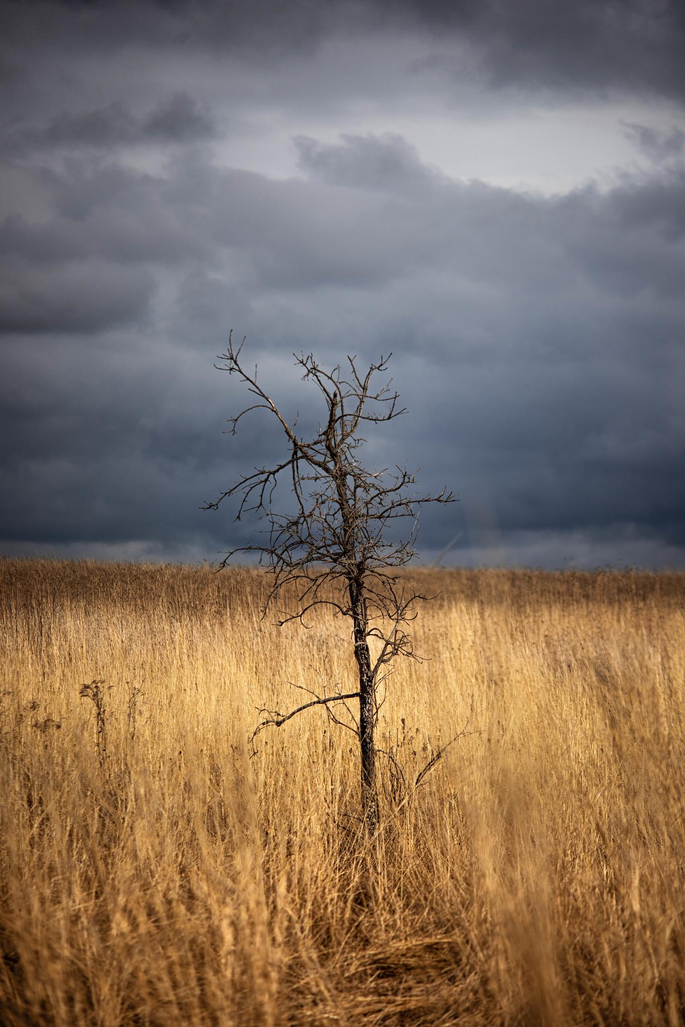 A Stormy Sunday Evening