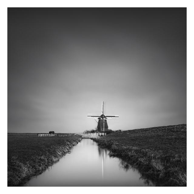 Dutch polder - The Hommel