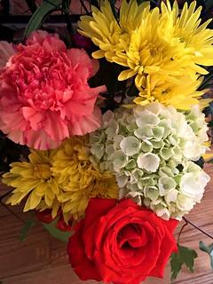 flowers in vase 1 | by PlantPostings