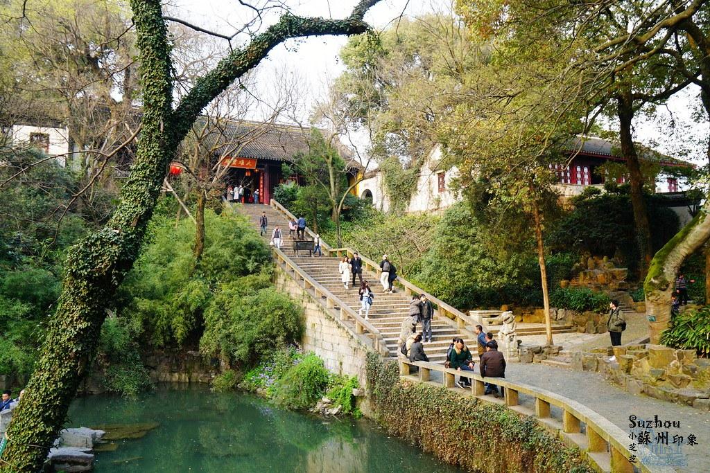 蘇州賞花TOP5景點攻略整理!春遊虎丘山風景區