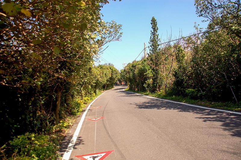 新屋單車專用綠色隧道 3