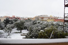 #snow  #nikond5300