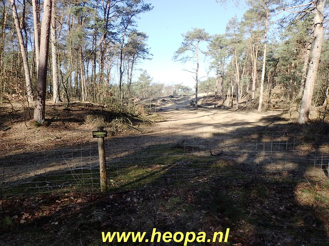 2019-02-27 Austerlitz 14 Km   (10)