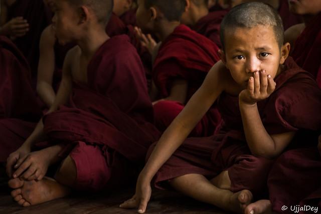 The Novice Monk