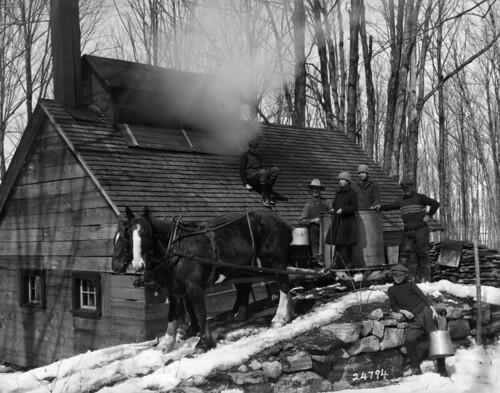 Collecting maple sap at a sugar bush, Saint-Hilaire, Québec / Collecte de l'eau d'érable, Saint-Hilaire (Québec) | by BiblioArchives / LibraryArchives