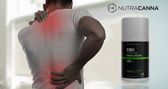 Do You Know How Effective CBD Cream for Back Pain is?