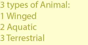 3 3 types of animal