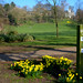 Colour at Avenham Park, Preston