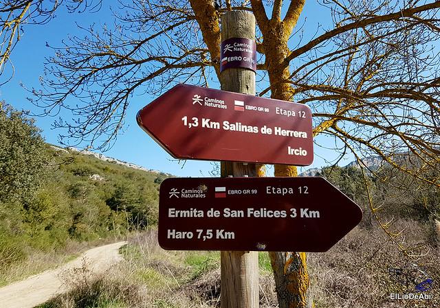 Por los montes de Herrera y el Yermo Camaldulense 4