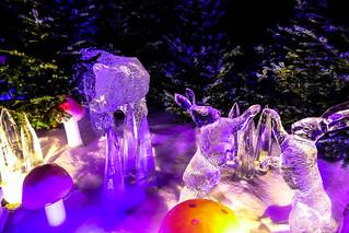 Hyde Park Winter Wonderland 2018   by ThemeParkMedia