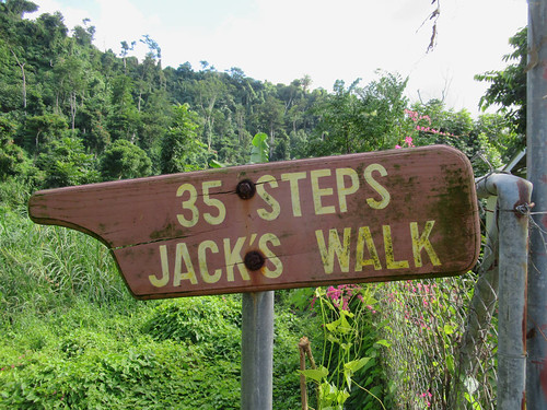 jackswalktrail dominicabotanicgardens roseau dominica caribbean mornebrucecross